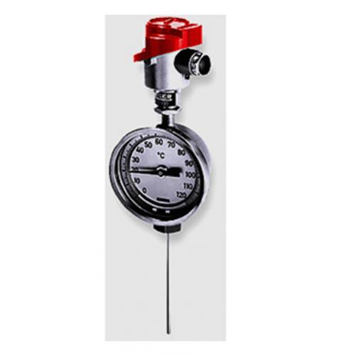 Rueger combination thermometer & thermosensor