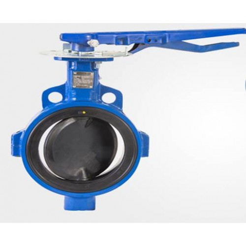 Delval SPECIAL APPLICATION resilient seat butterfly valve 5C-5D series