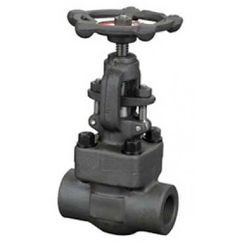 Douglas Chero forged steel & forged stainless steel globe valve